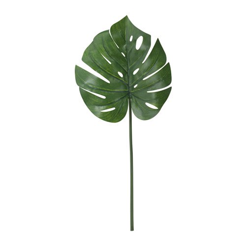 monstera-ikea
