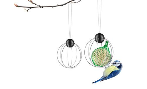 571033_suet-bird-feeders_regi1