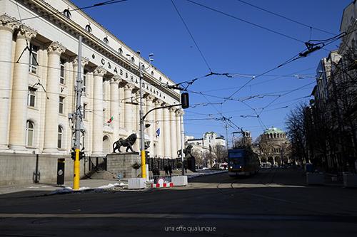 Sofia blog (9)