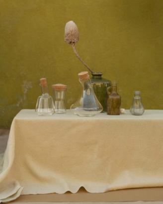 gallery5-800x599