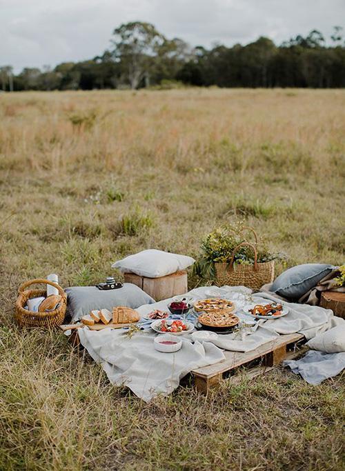 picnic (9)