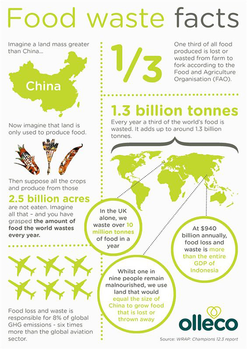 food waste (3)